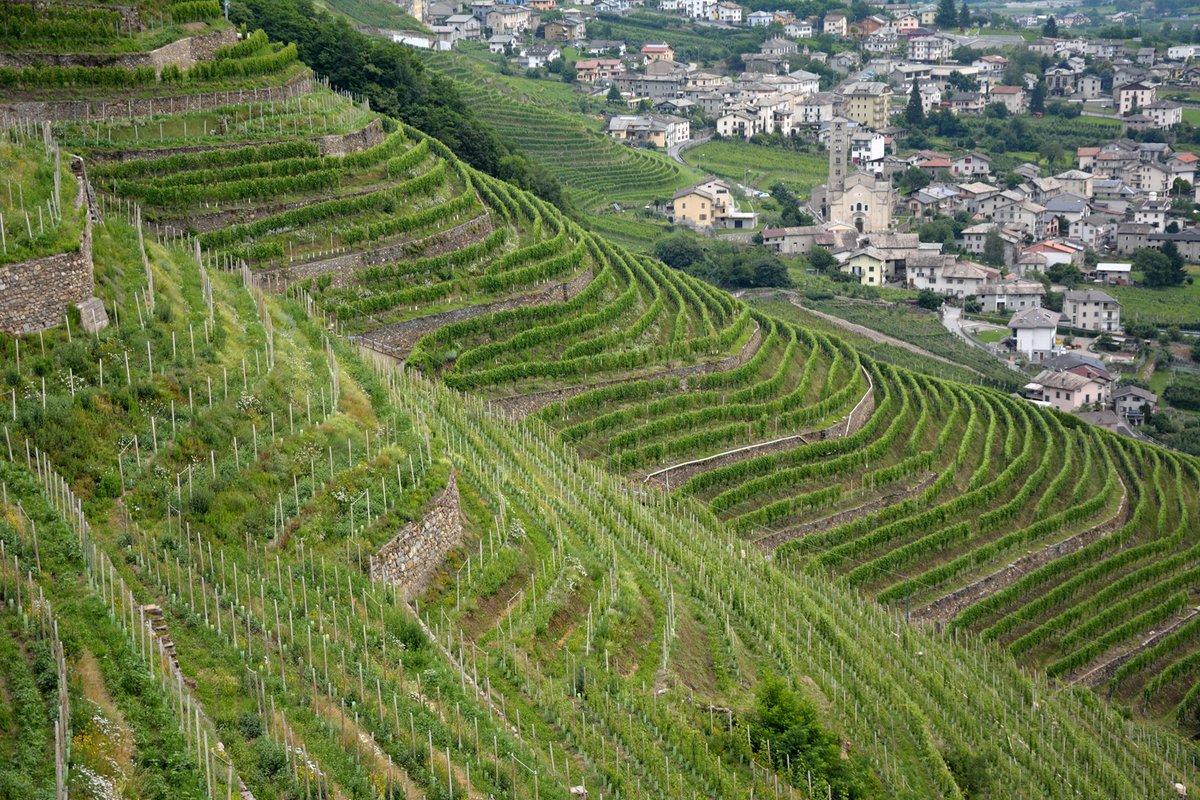 Tirano città del vino- Vista dall'alto